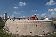 Vilniaus-bastėja1